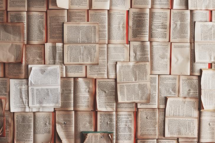 Literatura itzulpenetarako dirulaguntzak (2021)