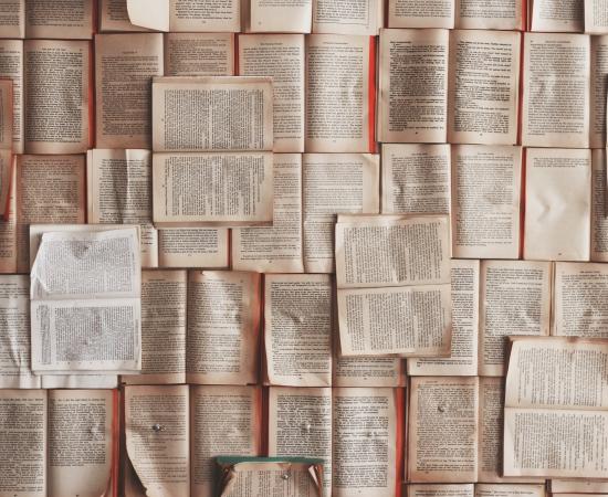 CORRECCIÓN en la convocatoria de subvenciones para la traducción de la literatura vasca
