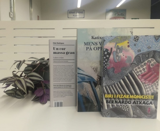 Translations of Basque novels recently published with the 2018 subsidies from the Etxepare Basque Institute